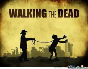 the-walking-dead-your-doing-it-wrong_o_1016379[1]